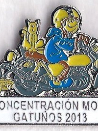 Pin de Concentración